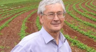 Dick Smith to close his grocery line