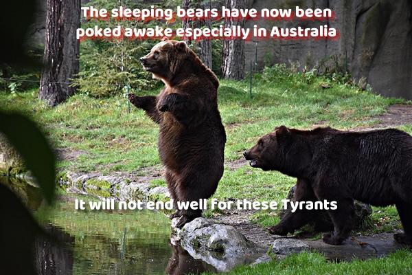 The Sleeping Bear has been poked awake in Australia